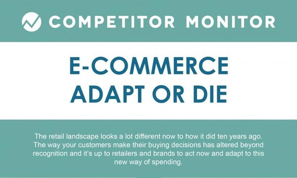 Adapt or Die: Steps For Online Retail Success
