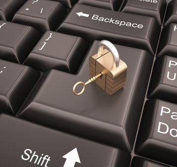 Online Security a Renewed Priority for Retailers in 2014